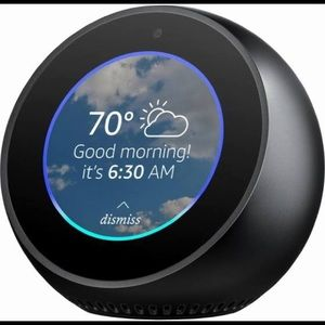 Other - Echo spot